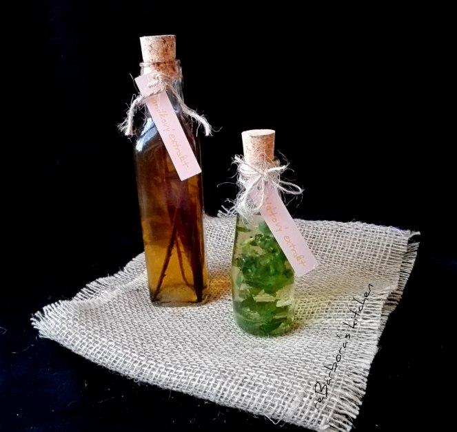 Domácí extrakt - vanilkový a mátový | reBarbora's kitchen