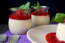 Limetková panna cotta s malinovou omáčkou | reBarbora's kitchen