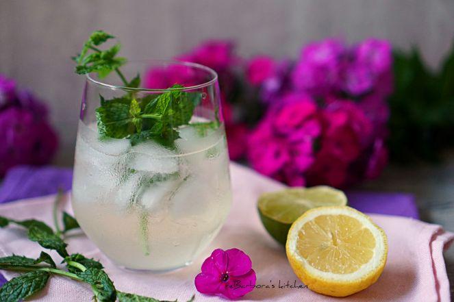 Prosecco Hugo - osvěžující letní koktejl | reBarbora's kitchen