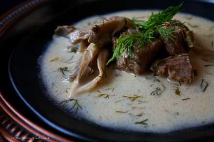 Koprová omáčka s hlívou ústřičnou | reBarbora's kitchen