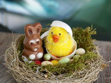 easter-nest-2157015_960_720
