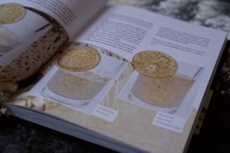 Recenze knih: Ruce v mouce - Iva Trhoňová | reBarbora's kitchen