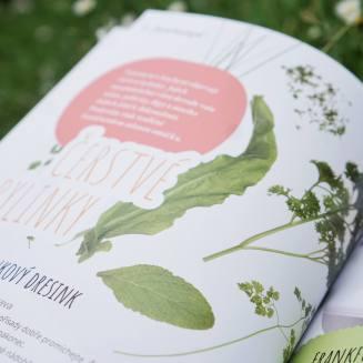 Recenze knih - Moje zahradní kuchařka | reBarbora's kitchen