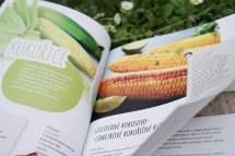 Recenze knih - Moje zahradní kuchařka   reBarbora's kitchen