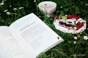 Recenze knih: Sladký život v Paříži - David Lebovitz | reBarbora's kitchen